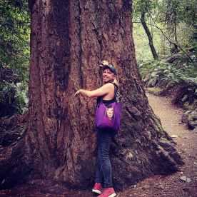 Redwoods .jpg